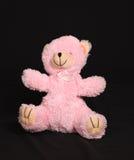 熊粉红色 免版税库存照片