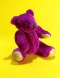 熊紫色 库存图片