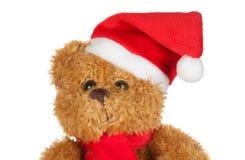 熊美丽的圣诞节帽子围巾女用连杉衬&# 免版税库存照片