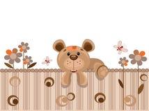 熊范围 免版税库存图片