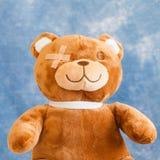 熊被伤害的女用连杉衬裤 图库摄影