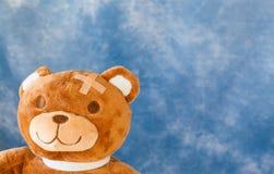 熊被伤害的女用连杉衬裤 库存照片