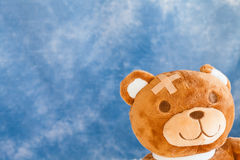 熊被伤害的女用连杉衬裤 免版税图库摄影