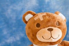 熊被伤害的女用连杉衬裤 库存图片