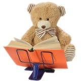 熊被充塞的书读取 免版税库存图片
