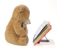 熊被充塞的书读取 免版税库存照片