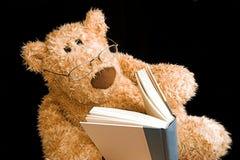 熊读取女用连杉衬裤 免版税库存图片