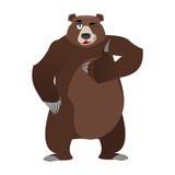 熊赞许和闪光 所有涌出北美灰熊 签字不错 H 皇族释放例证