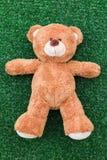 熊逗人喜爱的女用连杉衬裤 免版税库存照片