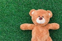 熊逗人喜爱的女用连杉衬裤 免版税图库摄影