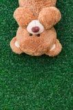 熊逗人喜爱的女用连杉衬裤 免版税库存图片