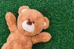 熊逗人喜爱的女用连杉衬裤 库存图片