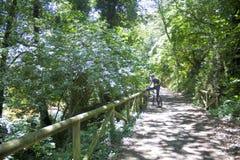 熊道路的骑自行车者在阿斯图里亚斯 免版税库存照片