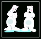 熊配对白色 免版税图库摄影