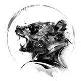 熊面孔旁边艺术画象在白色背景的 免版税图库摄影