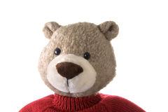 熊顶头女用连杉衬裤 图库摄影