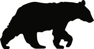 熊黑色走 图库摄影