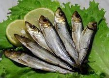 熏制的鱼服务用柠檬 库存图片