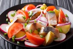 熏制的鲭鱼可口沙拉用土豆、萝卜和汤姆 免版税库存图片
