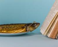 熏制的鲭鱼阅读书 库存照片