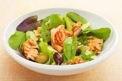 熏制鲑鱼沙拉用莴苣和橄榄 库存照片