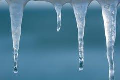 熔化的冰柱宏观射击与小滴的 库存照片