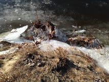 熔化的冰 库存照片