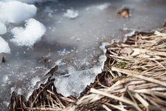 熔化的冰 库存图片