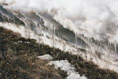 熔化的随风飘飞的雪 免版税图库摄影
