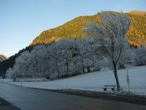 熔化的雪在春天 库存照片
