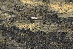 熔岩荒野空中直升机视图在Kilauea火山,大岛,夏威夷附近的 库存图片