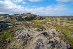 熔岩荒野, Reykjanes半岛 库存照片