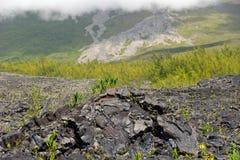 熔岩荒野 免版税库存图片