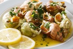 熟食食物:whelk,海洋蜗牛bulot用蒜酱油, p 免版税库存照片