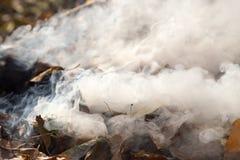 从燃烧的叶子的烟 免版税库存照片