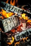 燃烧的木日志,烹调在火,温暖的晚上,在Th的闪闪发光 免版税库存照片