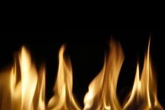 燃烧的火焰 Stock Photo