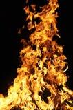 燃烧的火 库存照片