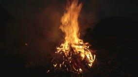 燃烧的篝火在晚上,阵营的,夏天游人 股票录像