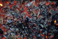 燃烧的红色煤炭 美好的背景 库存图片