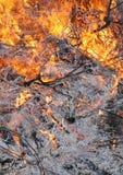 燃烧的陆运 图库摄影