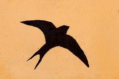 燕子的剪影 库存照片