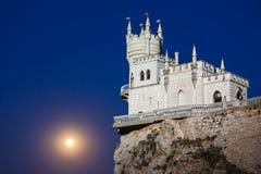 燕子的巢在月光的晚上 图库摄影