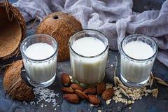 燕麦、椰子和杏仁牛奶 不含乳制品的素食主义者饮料 免版税库存图片