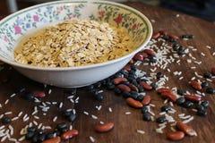 燕麦、豆和米 免版税图库摄影