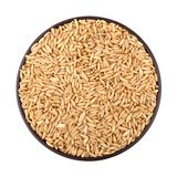 燕麦五谷 免版税图库摄影