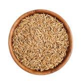 燕麦五谷 库存图片