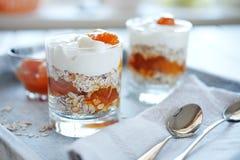 燕麦分层堆积用辣杏子果酱 健康概念的食物 库存照片