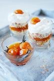 燕麦分层堆积用辣杏子果酱 健康概念的食物 库存图片