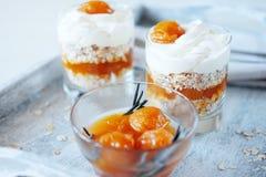 燕麦分层堆积用辣杏子果酱 健康概念的食物 免版税图库摄影